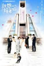 Nonton Streaming Download Drama Down with Love (2010) Subtitle Indonesia
