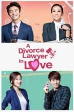 Nonton Streaming Download Drama Divorce Lawyer in Love (2015) Subtitle Indonesia