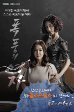Nonton Streaming Download Drama Lady of the Storm (2014) Subtitle Indonesia