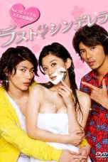 Nonton Streaming Download Drama The Last Cinderella (2013) Subtitle Indonesia
