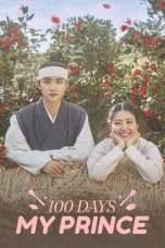 Nonton Streaming Download Drama 100 Days My Prince (2018) Subtitle Indonesia