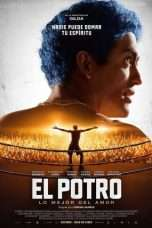 Nonton Streaming Download Drama El Potro (2018) Subtitle Indonesia