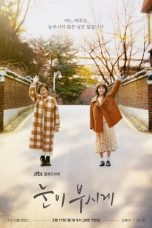 Nonton Streaming Download Drama Dazzling / The Light in Your Eyes (2019) Subtitle Indonesia