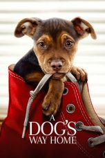 Nonton Streaming Download Drama A Dog's Way Home (2019) jf Subtitle Indonesia