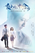Nonton Streaming Download Drama From Survivor to Healer (2019) Subtitle Indonesia