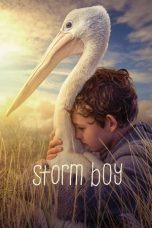 Nonton Streaming Download Drama Storm Boy (2019) jf Subtitle Indonesia