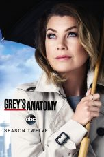 Nonton Streaming Download Drama Grey's Anatomy Season 12 (2015) Subtitle Indonesia
