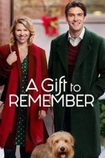 Nonton Streaming Download Drama A Gift to Remember (2017) gt Subtitle Indonesia