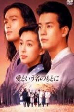 Nonton Streaming Download Drama In the Name of Love (1992) Subtitle Indonesia