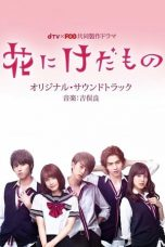Nonton Streaming Download Drama Flower and the Beast (2017) Subtitle Indonesia