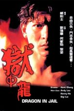 Nonton Streaming Download Drama Dragon in Jail (1990) gt Subtitle Indonesia