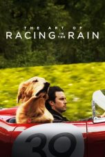 Nonton Streaming Download Drama The Art of Racing in the Rain (2019) jf Subtitle Indonesia