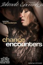Nonton Streaming Download Drama Chance Encounters (2018) Subtitle Indonesia