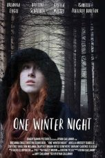 Nonton Streaming Download Drama One Winter Night (2019) Subtitle Indonesia
