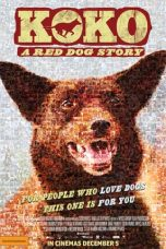 Nonton Streaming Download Drama Koko: A Red Dog Story (2019) Subtitle Indonesia