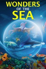 Nonton Streaming Download Drama Wonders of the Sea 3D (2017) jf Subtitle Indonesia