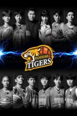 Nonton Streaming Download Drama Handsome Tigers (2020) Subtitle Indonesia