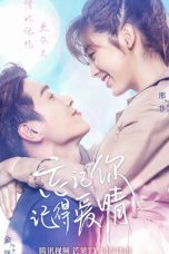 Nonton Streaming Download Drama Forgetting You, Remembering Love (2020) Subtitle Indonesia
