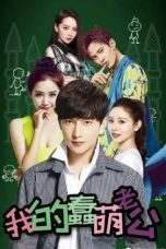Nonton Streaming Download Drama My Stupid Cute Husband (2016) Subtitle Indonesia
