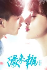 Nonton Streaming Download Drama Edge of Happiness (2016) Subtitle Indonesia