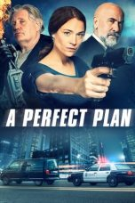 Nonton Streaming Download Drama A Perfect Plan (2020) jf Subtitle Indonesia