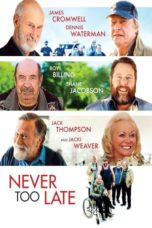 Nonton Streaming Download Drama Never Too Late (2020) jf Subtitle Indonesia
