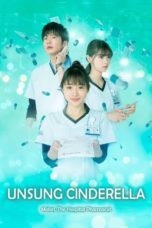 Nonton Streaming Download Drama Nonton Unsung Cinderella: Midori, The Hospital Pharmacist (2020) Sub Indo Subtitle Indonesia