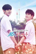 Nonton Streaming Download Drama Nonton Mr. Heart (2020) Sub Indo Subtitle Indonesia