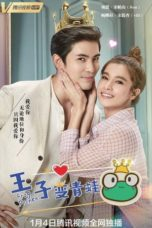 Nonton Streaming Download Drama Nonton The Frog Prince / Rak Woon Wai Jao Chai Kob (2021) Sub Indo Subtitle Indonesia